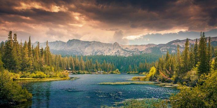 landscape-canada lake forest
