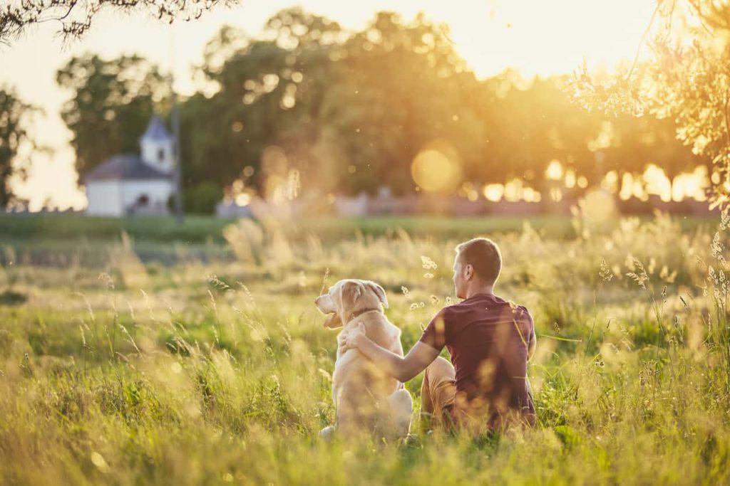 Le chien en dit long sur votre personnalité